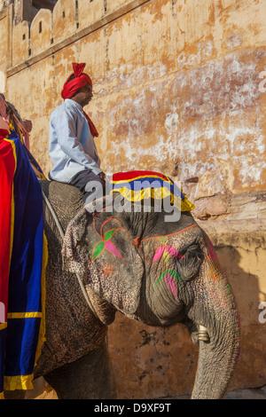 Décoré éléphant à Fort Amber sur Décembre, Janvier, 27, 2013 à Jaipur, Rajasthan, Inde. Banque D'Images