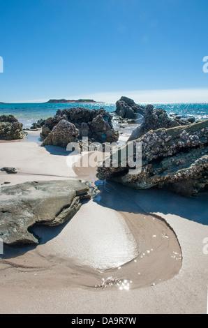 Les rochers et les coquilles de moules de sable à la plage de l'est de Cape Leveque, la péninsule de Dampier, Kimberley, Banque D'Images