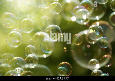 La lumière du soleil d'été et des bulles de savon Banque D'Images