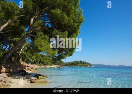Plage de Playa de Formentor Banque D'Images