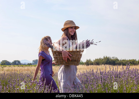 Les jeunes femmes marchant à travers champ de lavande, Croatie, Dalmatie, Europe Banque D'Images