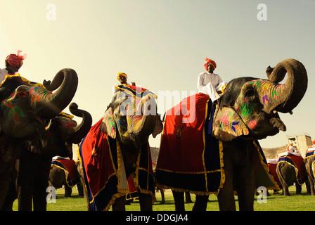 Cornacs éléphants éléphants avec en Festival, Jaipur, Rajasthan, Inde Banque D'Images