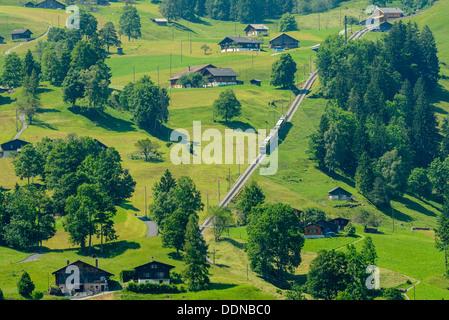 Wengernalpbahn former sur des pentes près de Grindelwald, Suisse Banque D'Images