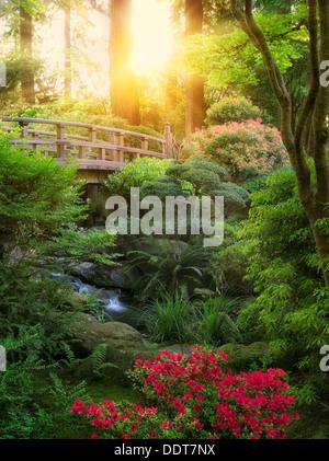 Pont, Ruisseau et Rhododendron en fleurs. Jardin japonais de Portland, Oregon Banque D'Images