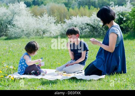 Mère et enfants having picnic in meadow Banque D'Images
