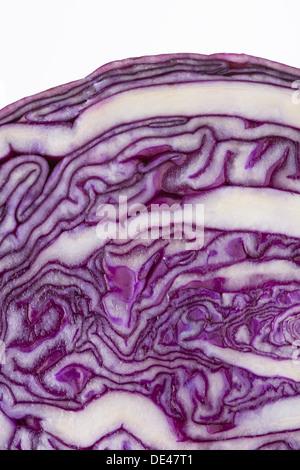 Une macro close up d'aliments nutritifs, sains, savoureux et appétissant du chou rouge coupé en deux Banque D'Images