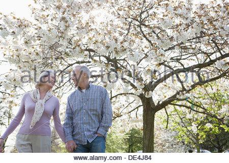 Senior couple holding hands en vertu de l'arbre en fleurs Banque D'Images