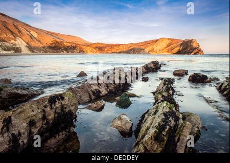 Au cours de l'aube, Lulworth Cove Dorset Banque D'Images