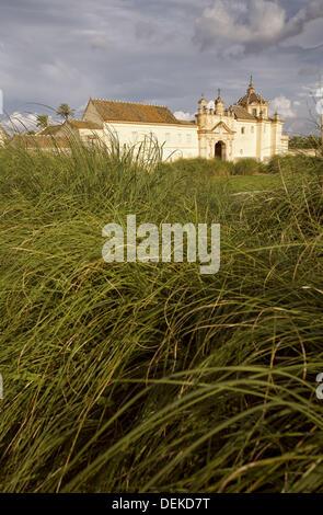 Musée d'art contemporain. Monasterio de la Cartuja chartreuse. L'île de La Cartuja. Sevilla. Espagne Banque D'Images