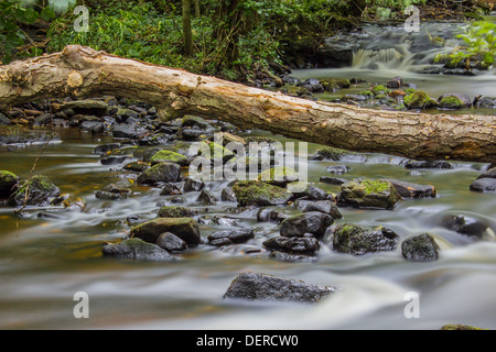 L'exposition à long shot de la rivière qu'il dégringole à travers Rivelin la vallée Rivelin à Sheffield Banque D'Images