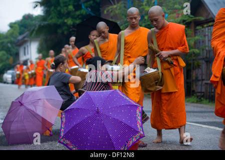 Les moines bouddhistes, recevoir des dons sur leur matin aumône ronde, Luang Prabang, Laos Banque D'Images