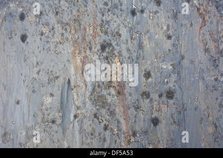 Les textures de roche pour les fonds ot fichiers de textures. Banque D'Images