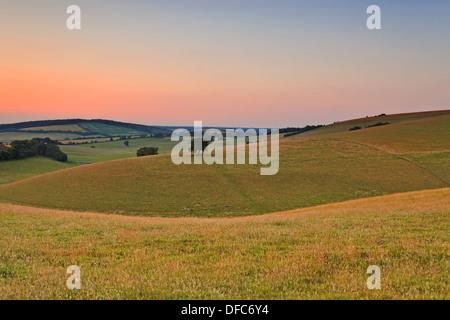 Crépuscule sur un soir de juillet à l'ensemble du South Downs dans le Hampshire. Banque D'Images