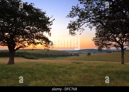 Les South Downs dans le Hampshire, encadré par deux arbres de chêne qui se profile comme le coucher du soleil juillet Banque D'Images