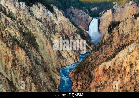 Vue du haut des chutes et la rivière Yellowstone vu de Artist Point dans le Parc National de Yellowstone, Wyoming Banque D'Images