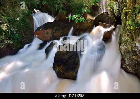 L'Argentine, le Parc National d'Iguaçu: spot détaillées et paradise cascade de l'Iguassu Falls Banque D'Images
