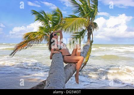 Young woman in bikini assis sur palmiers, Bonita Beach, Dominican Republic Banque D'Images
