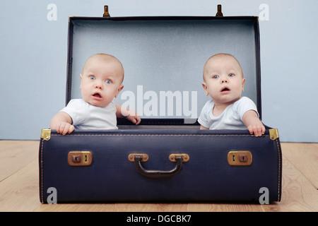 Deux garçons de bébé assis dans suitcase, portrait Banque D'Images
