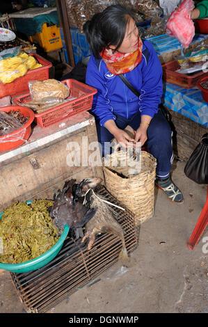 Femme plumant une marché songbird pour vente comme la viande sur le marché hebdomadaire de la ville d'Phansavan, Banque D'Images