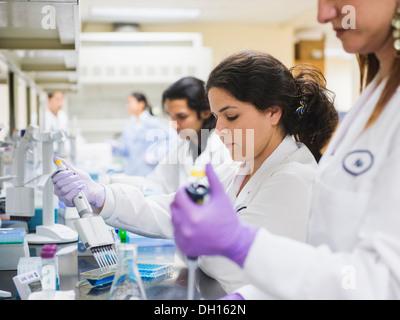 Les scientifiques travaillant dans les laboratoires Banque D'Images