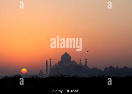 Taj Mahal Agra Uttar Pradesh Inde Asie Banque D'Images