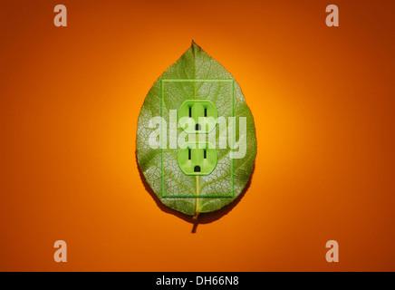Une plante verte avec des feuilles de couleur vert prises électriques ajouté. Fond orange lumineux Banque D'Images