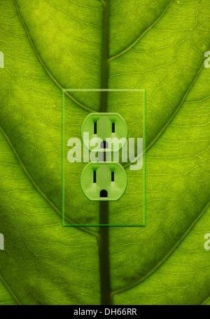 Close-up d'une plante verte avec des feuilles de couleur vert prises électriques ajouté. Banque D'Images