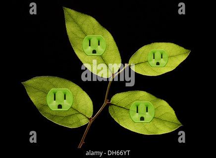 Quatre feuilles des plantes vertes avec des prises électriques de couleur verte ajouté. Fond noir Banque D'Images