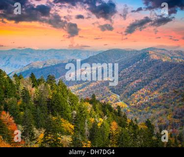 Matin d'automne dans les Smoky Mountains National Park. Banque D'Images