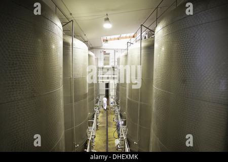 De grands réservoirs dans une brasserie Banque D'Images