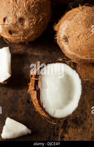 Produits frais bio de Coco marron à chair blanche Banque D'Images