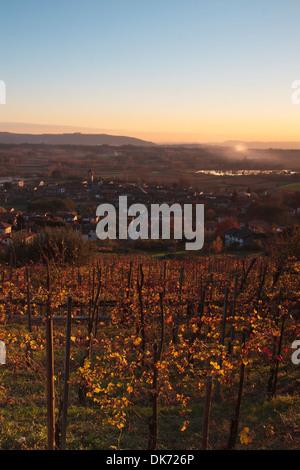 Coucher de soleil sur le vignoble italien sur l'automne Banque D'Images