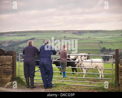 Agriculteur à maturité, fils et petit-fils adultes leaning on porte au champ de vache, vue arrière Banque D'Images
