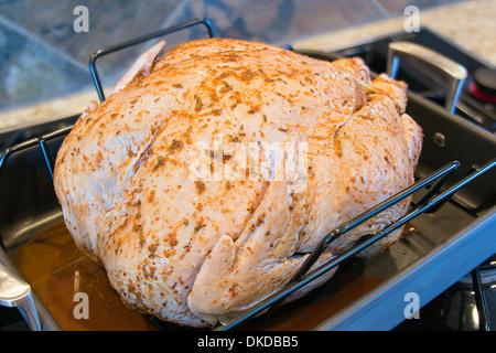 La Turquie macérées, non cuit et assaisonné avec des épices dans la rôtissoire pour dîner de Thanksgiving libre Banque D'Images