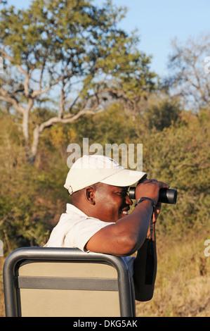 Commande de jeu, Sabi Sand Game Reserve, Afrique du Sud