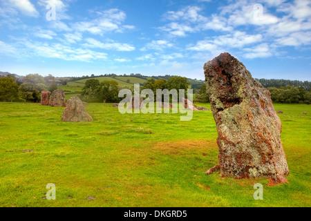Les cercles de pierres, Stanton Drew, Somerset, England, United Kingdom Banque D'Images