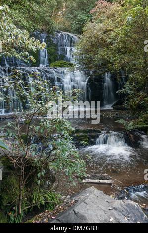 Purakaunui Falls, le Sud, Catlins Otago, île du Sud, Nouvelle-Zélande.L'île du Sud, Nouvelle-Zélande.