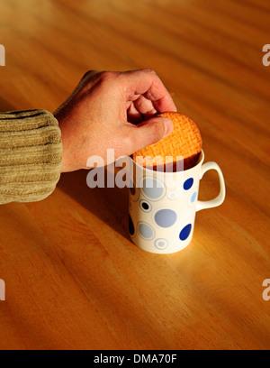 Tremper un biscuit digestif dans une tasse de thé. Banque D'Images