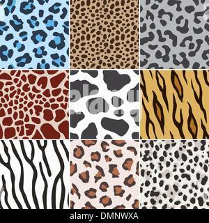 La peau animale transparente texture motif de tissu Banque D'Images