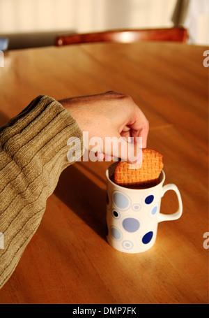 Un homme âgé tremper un biscuit digestif dans une tasse de thé. Banque D'Images