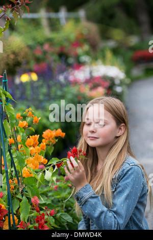 Une pépinière de fleurs biologiques. Une jeune fille à la recherche de fleurs. Banque D'Images