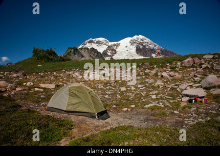 WASHINGTON - Camping dans les prés de l'Tokaloo Zone alpine du mont Rainier National Park. Banque D'Images