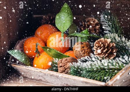 Mandarines avec feuilles et branches de sapin sur fond de bois