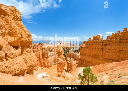 Thors Hammer monolith sur le sentier en boucle Navajo, Sunset Point, Bryce Amphitheater, Bryce Canyon National Park, Banque D'Images