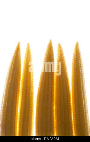 Mini-Maïs, Légumes Banque D'Images