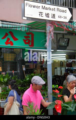 La Chine Hong Kong l'île de Kowloon Flower Market Road Mongkok vente du vendeur afficher shopping acheter vendre Banque D'Images