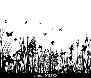 Vector silhouettes de papillons avec fond en herbe Banque D'Images