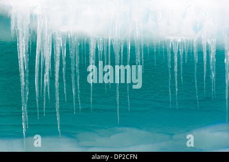 L'ANTARCTIQUE - Long les glaçons pendre à l'extérieur du bord d'un iceberg dans la Cierva Cove en Antarctique. Banque D'Images