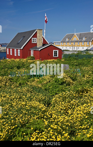 Maisons colorées à Nuuk (Godthab), Groenland Banque D'Images