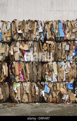 L'état de Washington, États-Unis d'installation de recyclage de carton Ensembles triés Banque D'Images